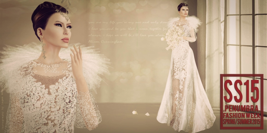 dream wedding dress-2 (2)